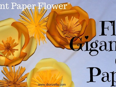 Spring DIY. Flor Gigante en Papel. Giant Paper Flower Diorizella Events and Crafts