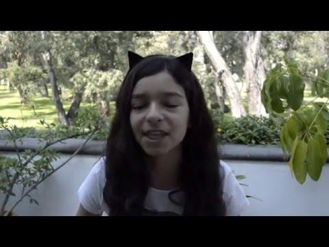 DIY - Orejitas de gatito - Como hacer orejas de gato en casa