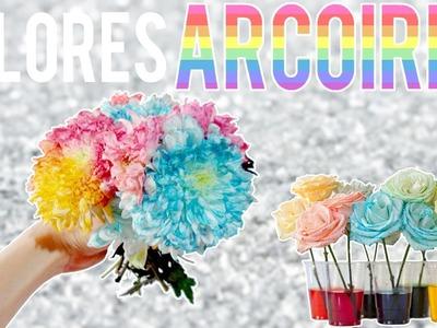 EXPERIMENTO cambiale el color a una flor - Tutoriales Belen