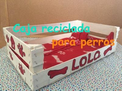 Decoración de caja para perros reciclada