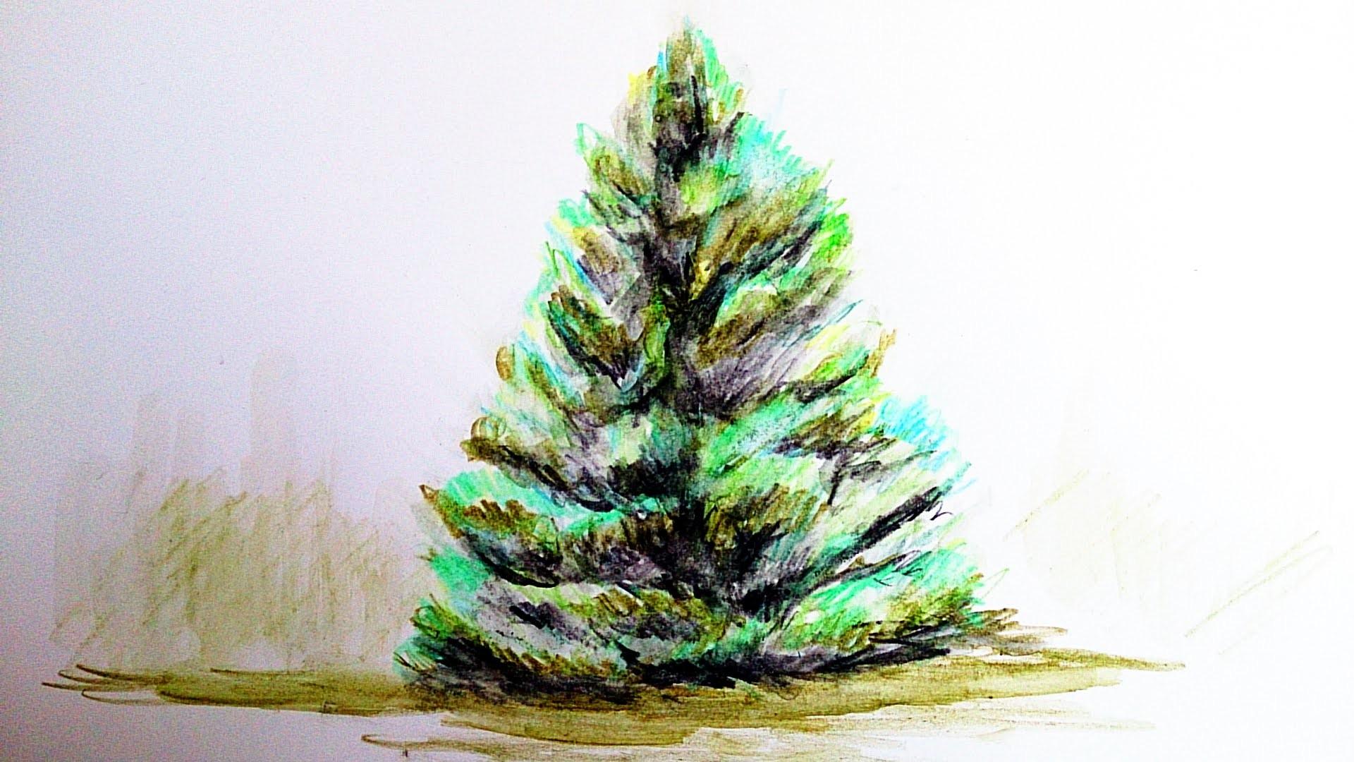 Como pintar un arbol con lapiz acuarelable como pintar - Como pintar un radiador ...