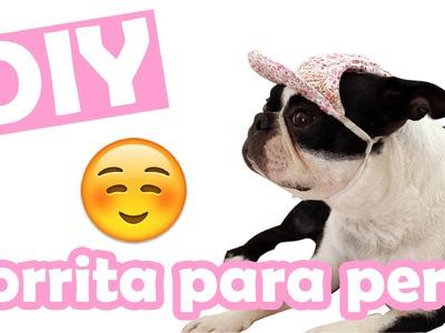 DIY ♥ Gorrita para perro ♥ Mascotas ♥ Colaboración con Hi Kali