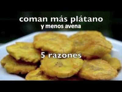 5 razones para NO comer Avena (ni agua de avena)