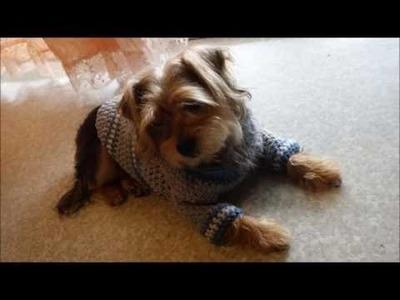Como hacer un sueter para perro tejido  a crochet