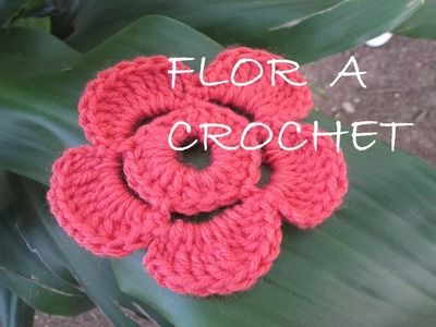 Flor de Crochet - Ganchillo 5 petalos TUTORIAL Paso a paso