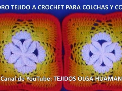 Cuadro Tejido a Crochet # 21 para Colchas y Cojines