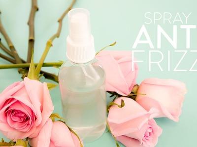 DIY Spray anti frizz   The Beauty Effect