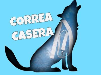 COMO HACER UNA CORREA PARA TU PERRO. Correa para perro casera en 5 minutos ♥
