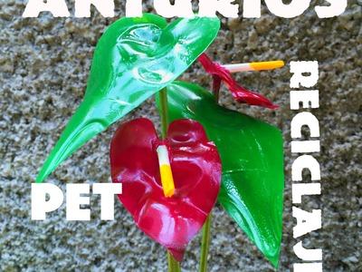 Diy Flor Anturio de PET Botella de plástico anthurium flower pet recycling