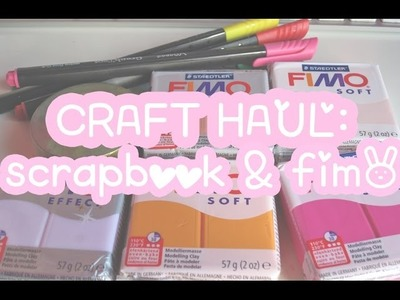 CRAFT HAUL 5:  Material scrapbook & fimo ♡