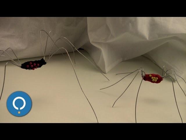 Araña casera para Halloween - MANUALIDADES PARA HALLOWEEN
