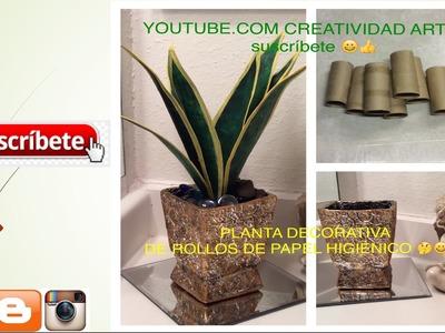Planta hecha con rollos de papel higiénico