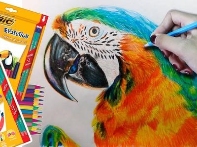 Dibujando con BIC Evolution! #YoDibujoConTodo   Diana Díaz