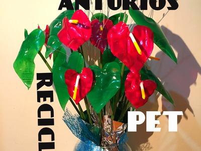 Diy arreglo floral Anturios Pet reciclaje Floral arrangement of anthuriums Pet