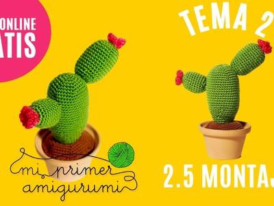 Tema 2.5 | Cactus | Montaje | Curso Online Mi primer amigurumi (Tutorial ganchillo)