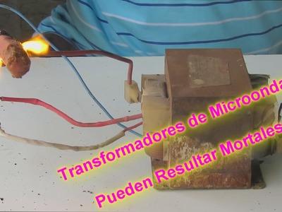 Transformador de Microondas: Una Trampa Mortal. Microwave transformer: A Death Trap
