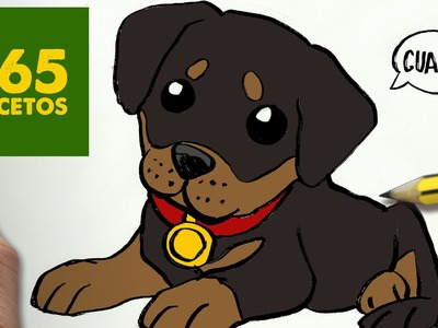 COMO DIBUJAR UN PERRO ROTTWEILER PASO A PASO: Os enseñamos a dibujar un perro fácil para niños