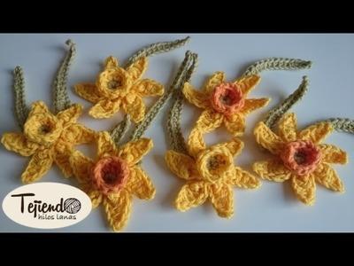 Flores a ganchillo ( narcisos )