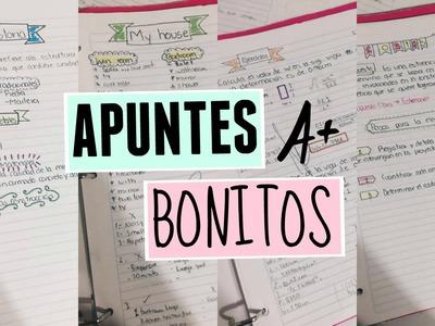 APUNTES BONITOS   REGRESO A CLASES 2016   Pao DIY