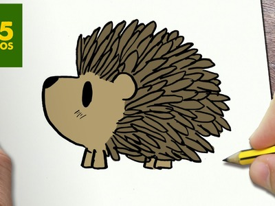 COMO DIBUJAR ERIZO KAWAII PASO A PASO - Dibujos kawaii faciles - How to draw a HEDGEHOG