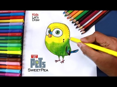 Cómo dibujar a ALITAS (La Vida Secreta de tus Mascotas) | Drawing SweetPea The Secret Life of Pets