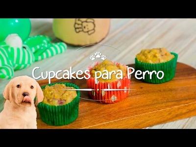 Cupcakes caseros para tu perro.
