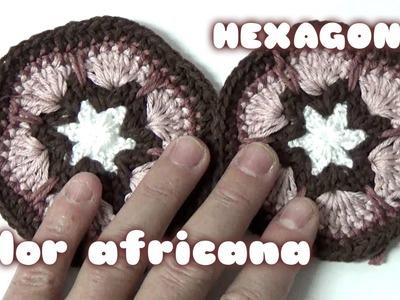 FLOR AFRICANA EN HEXAGONO EN GANCHILLO.AFRICAN flower in crochet hexagonal