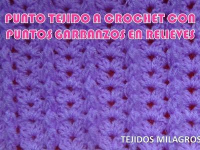 Punto Crochet N° 23 para prendas tejidas de invierno en puntos garbanzos en relieves