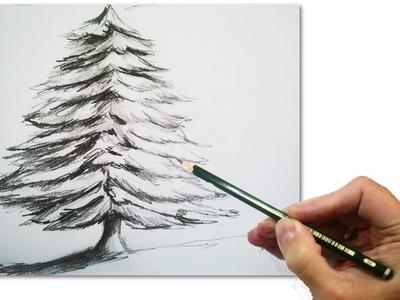 Cómo Dibujar Un Abeto o Arbol de Navidad Realista Paso a Paso a Lápiz: Tecnicas de Dibujo