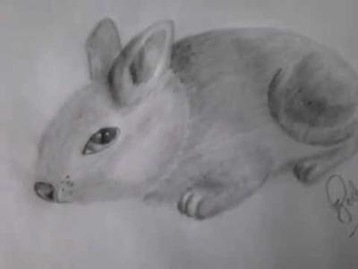 Como dibujar un conejo-rata a lapíz, con sombras facil y rapido (tutorial).