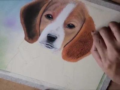 Como Dibujar y Pintar un Perro con Pastel seco Tiza Pastel