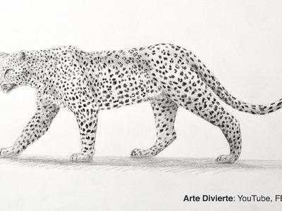 Cómo dibujar un leopardo de perfil a lápiz