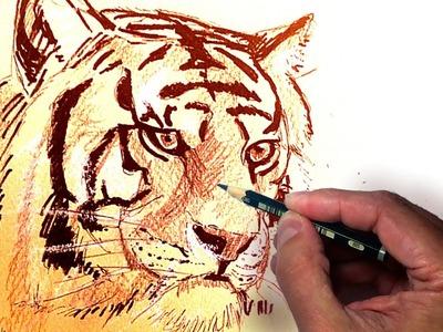 Como Dibujar un Tigre Realista Usando Lápiz, Tinta y Tiza, tecnicas de dibujo, fácil y paso a paso