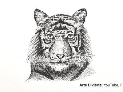 Cómo dibujar una cabeza de tigre con bolígrafo - Boceto