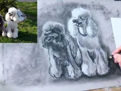 Como #Dibujar Perros a partir de Fotografias: Dibujo al Carboncillo y Tiza paso a paso