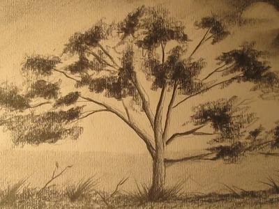 Cómo dibujar un árbol a lápiz para principiantes, dibujos de árboles para niños
