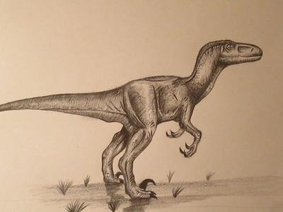 Cómo dibujar un velociraptor a lápiz, dibujando dinosaurios how to draw velociraptor