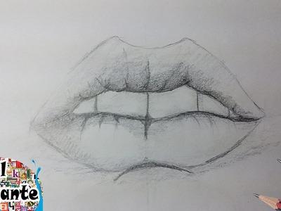 Como Dibujar una Boca, labios paso a paso [El Dibujante]