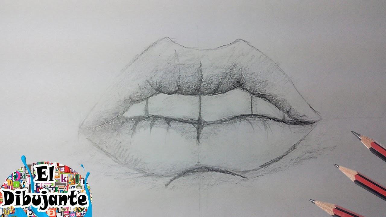 Como Dibujar Una Boca Labios Paso A Paso El Dibujante