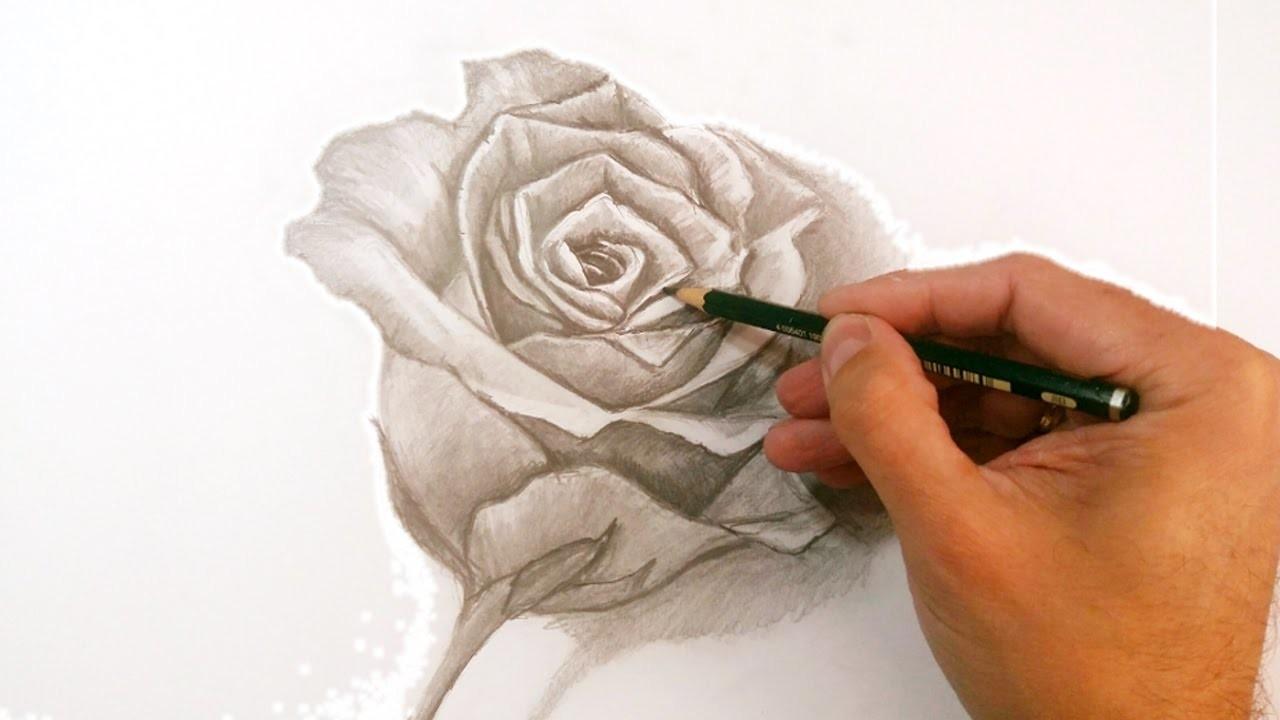 Cómo Dibujar Una Rosa A Lápiz Paso A Paso Técnicas De Dibujo A Lápiz