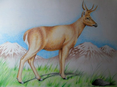 Realismo con lápices de colores, técnicas de dibujo realista a lápiz