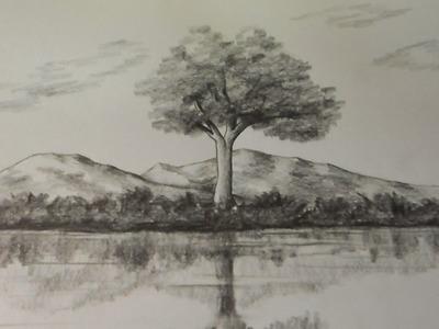 Como Dibujar Reflejos de Naturaleza en el Agua. Estudio de Reflejos a Lápiz.