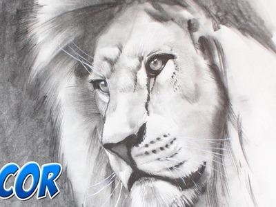 Como Dibujar un León Realista