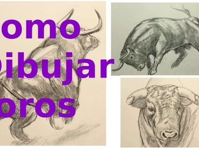 Cómo Dibujar un Toro: Técnica de Dibujo de Animales