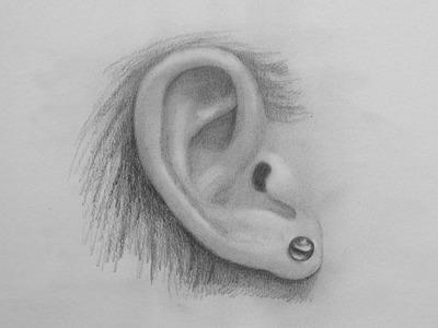 Cómo dibujar una oreja realista - Arte Divierte
