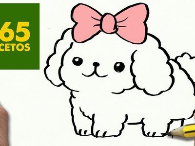 COMO DIBUJAR UN PERRO BICHON BOLOÑES PASO A PASO: Os enseñamos a dibujar un perro fácil para niños