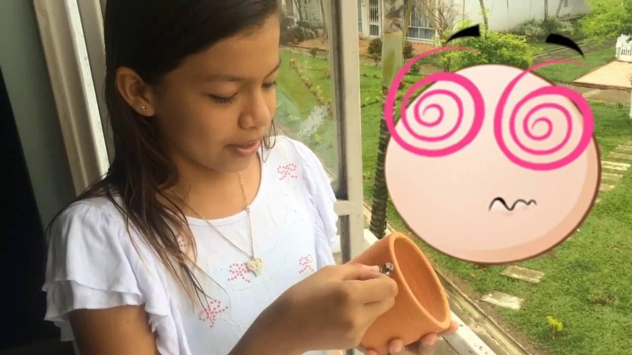 Cómo Decorar una Maceta con Piedras Decorativas - Decoración de una Matera con Pedreria