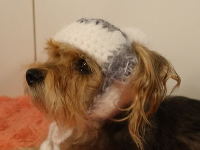 Gorro para perro crochet.  bomber hat for dogs