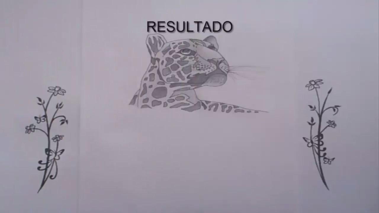 Como dibujar un leopardo   How to draw a leopard