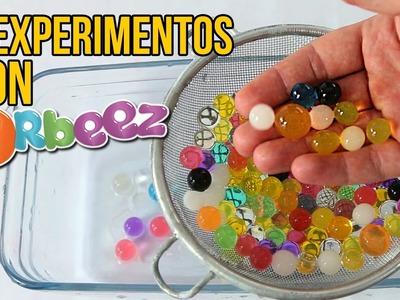 4 EXPERIMENTOS INCREÍBLES CON ORBEEZ (Experimentos para niños)